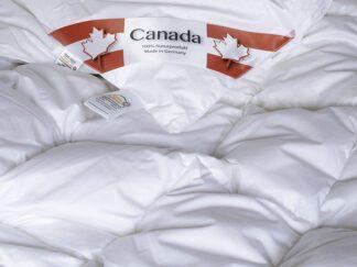 3 Canada gåsduntäcke
